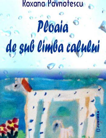 roxana-pavnotescu-ploaia